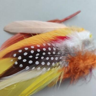 Набор разных перьев #3 15 шт.