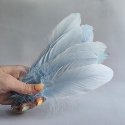 Гусиные перья небесно-голубые 2 сорт 20 шт.
