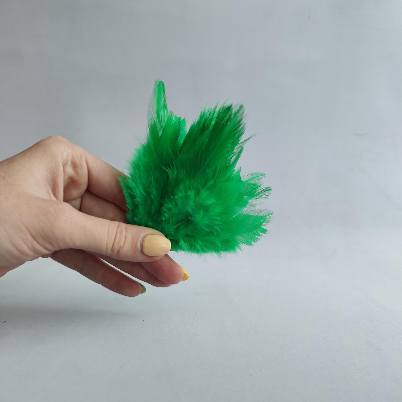 Перья петуха зеленые 2 сорт 20 шт.