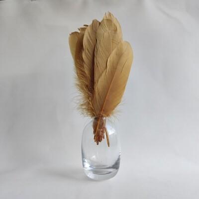 Гусиные перья оливковые ровные 20шт.