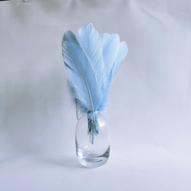 Гусиные перья небесно-голубые ровные 20шт.