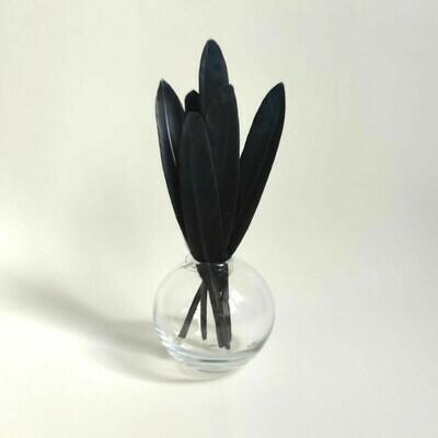 Перья утки черные 50 шт.