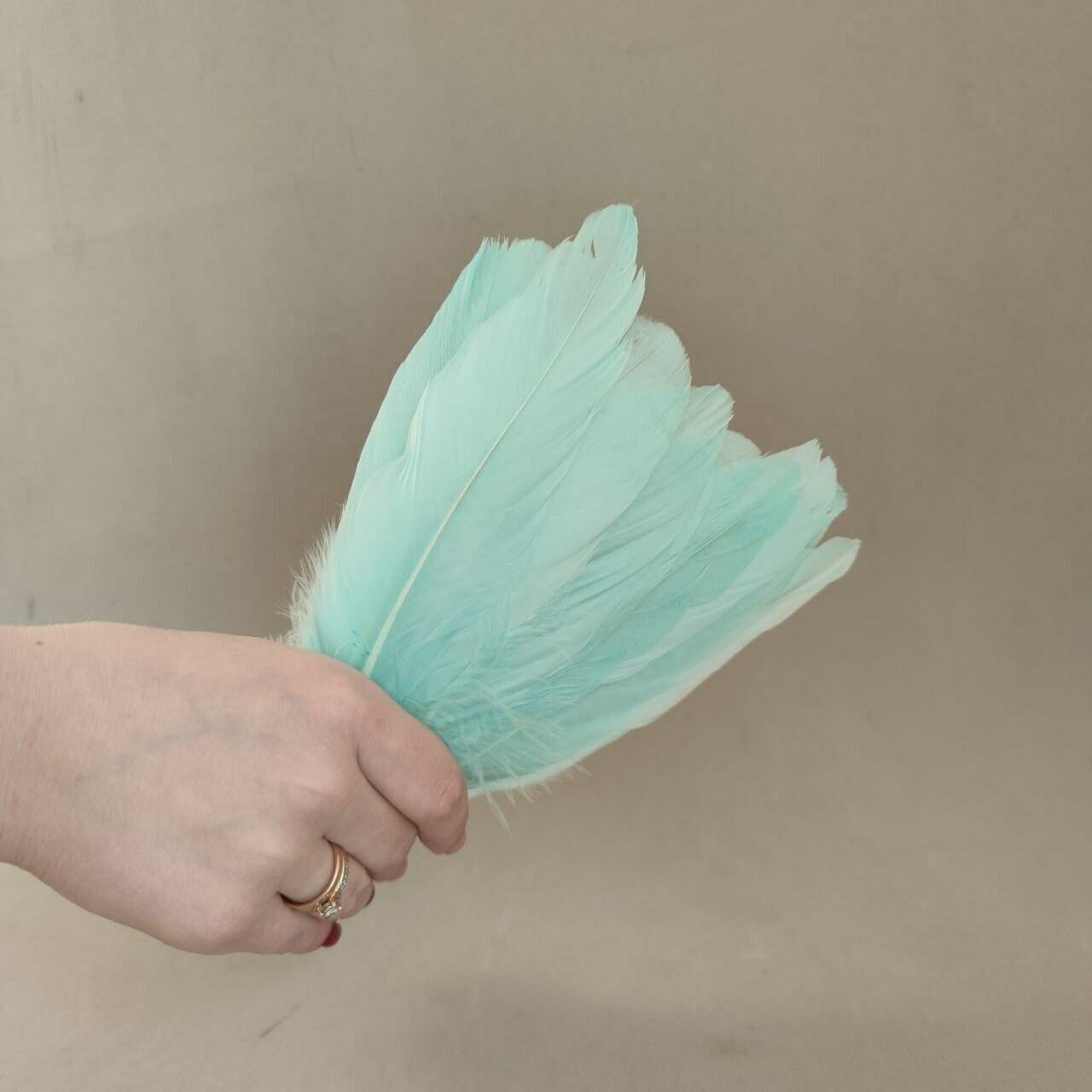 Гусиные перья мятные 2 сорт 20 шт.