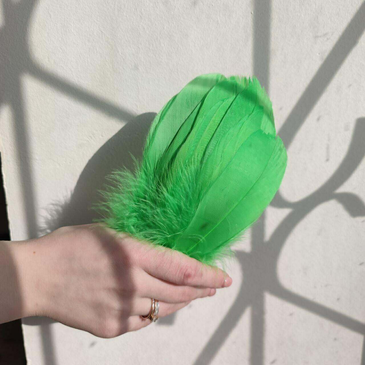 Гусиные перья салатовые 2 сорт 20 шт.