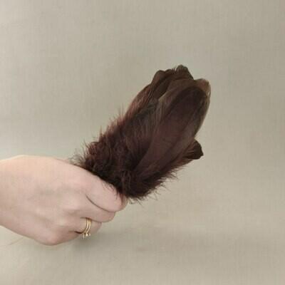 Гусиные перья темно-коричневые 2 сорт 20 шт.