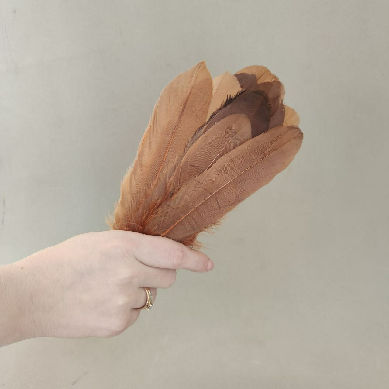 Гусиные перья коричневые 2 сорт 20 шт.