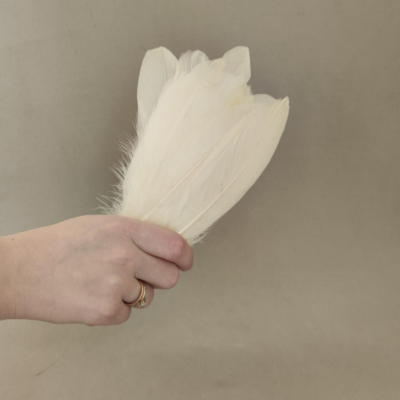 Гусиные перья бежевые 2 сорт 20 шт.