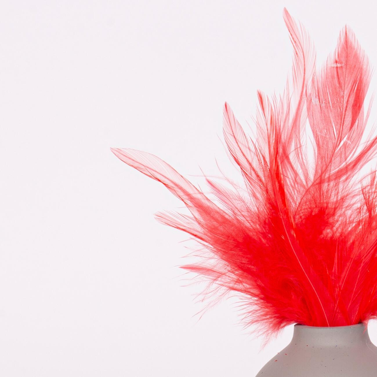 Перья петуха красные 7 - 13 см. 20 шт.