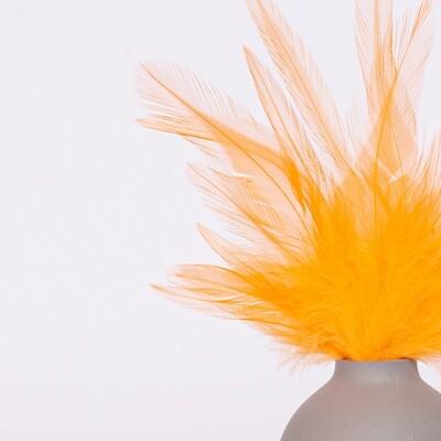 Перья петуха оранжевые 7 - 13 см. 20 шт.