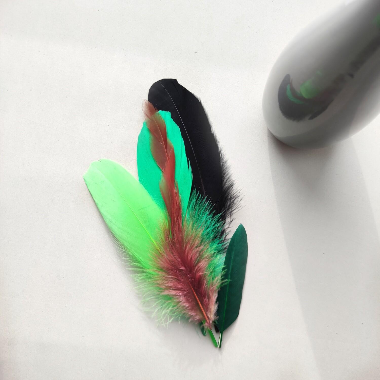 Набор перьев 5 шт. - зеленый