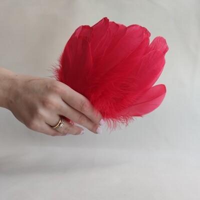 Гусиные перья красные 2 сорт 20 шт.