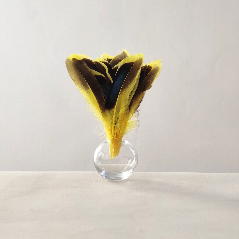 Перья кряквы желтые 10 шт.