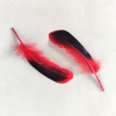 Перья кряквы красные 10 шт.