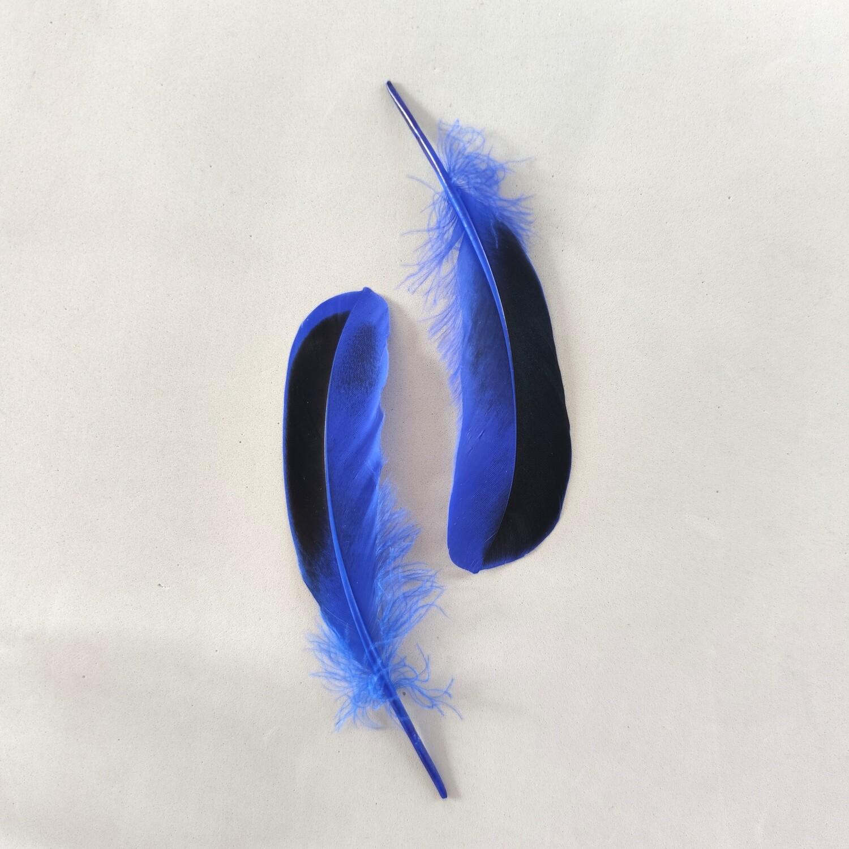 Перья кряквы синие 10 шт.