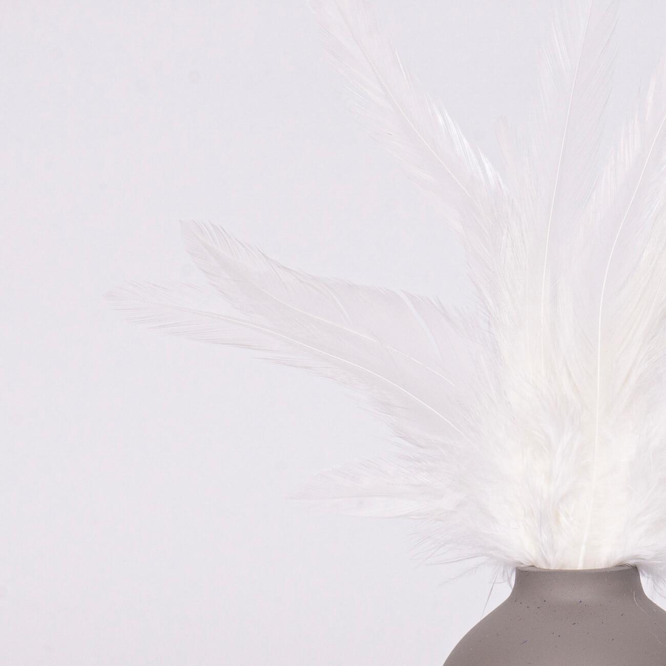 Перья петуха белые 7 - 13 см. 20 шт.