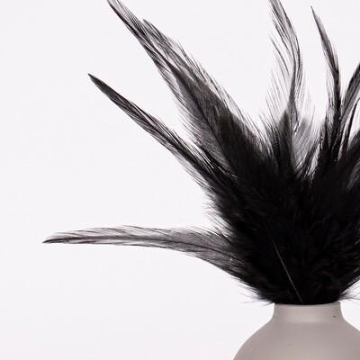Перья петуха черные 7 - 13 см. 20 шт.