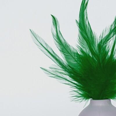 Перья петуха зеленые 7 - 13 см. 20 шт.
