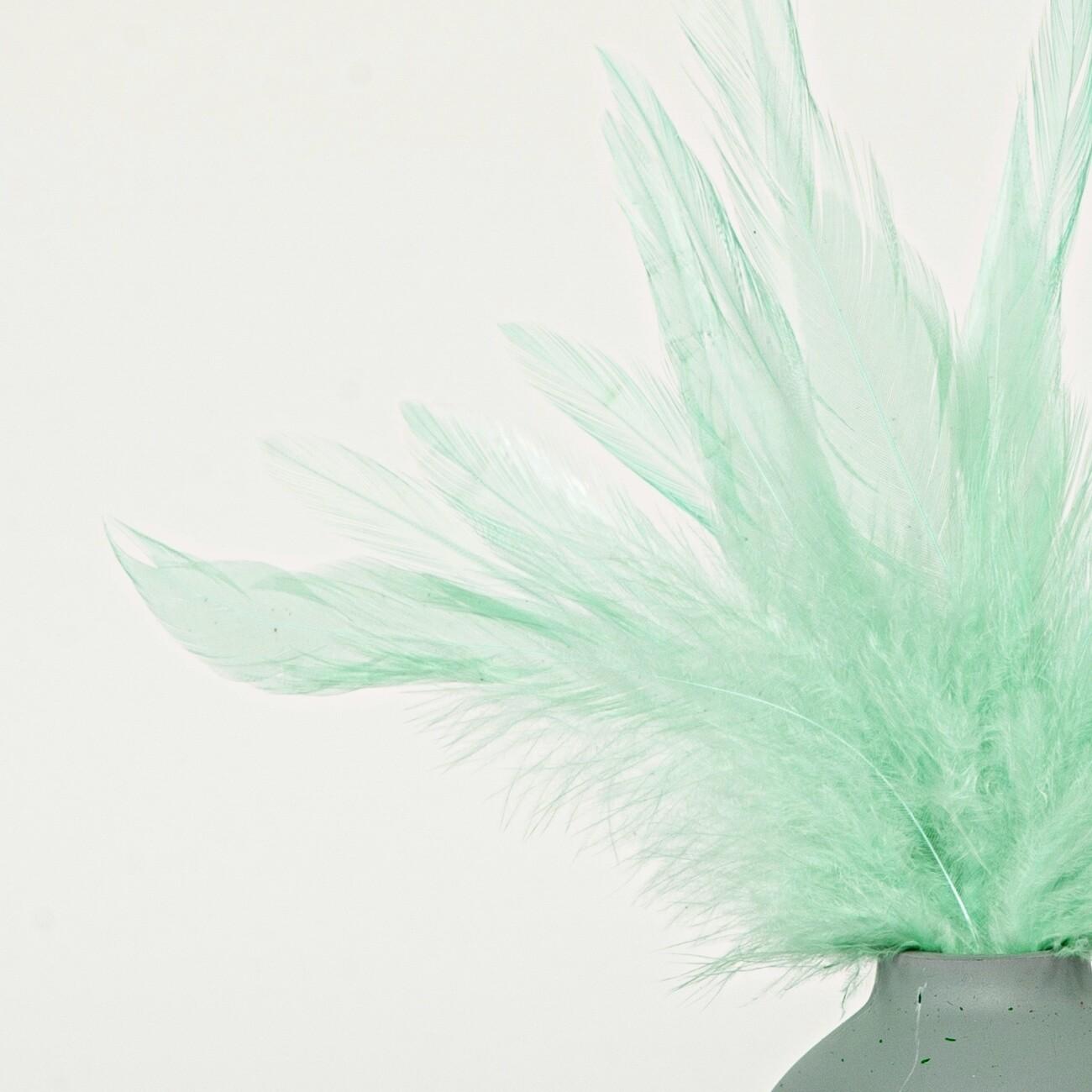 Перья петуха мятные 5 - 10 см. 20 шт.