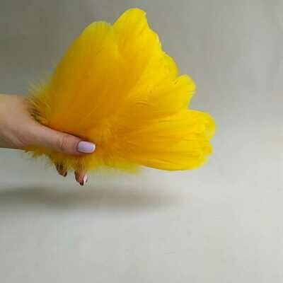 Гусиные перья апельсиновые 2 сорт 20 шт.