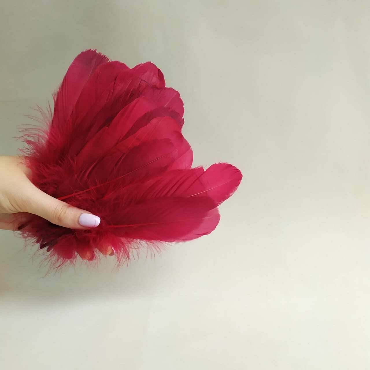 Гусиные перья вишневые 2 сорт 20 шт.