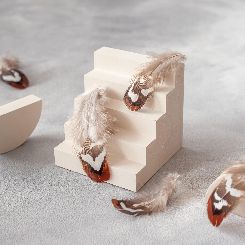 Перья королевского фазана 5-9 см. скругленные 10 шт.