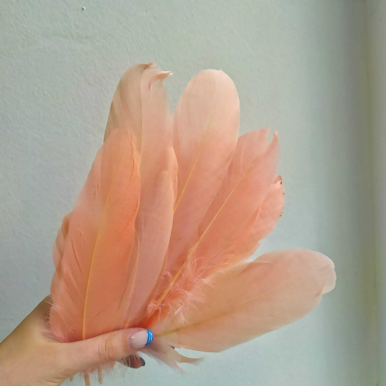 Гусиные перья пудровый 2 сорт 20 шт.