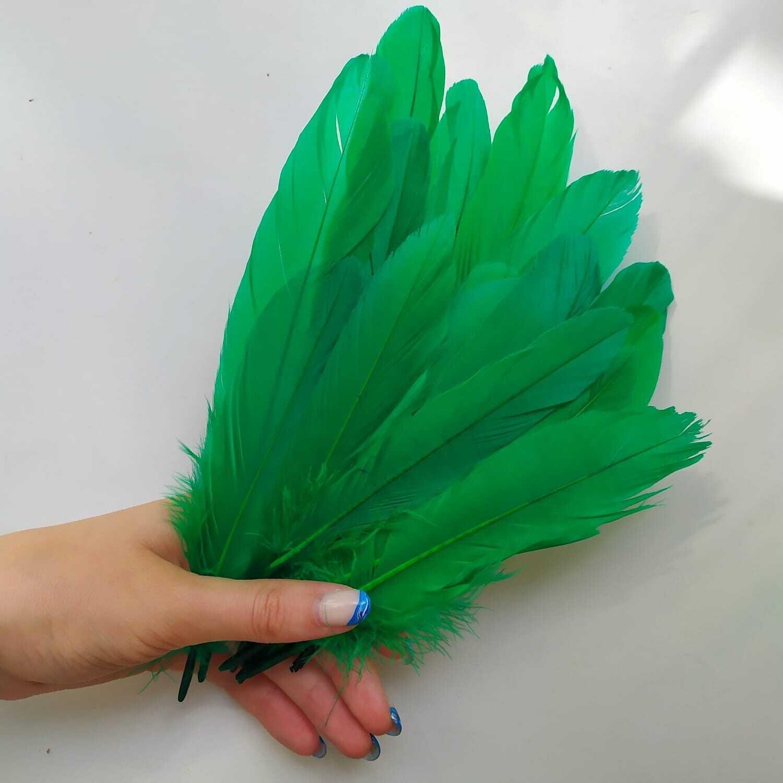 Гусиные перья зеленые 2 сорт 20 шт.