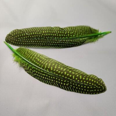 Перо цесарки салатовые 15-20 см.
