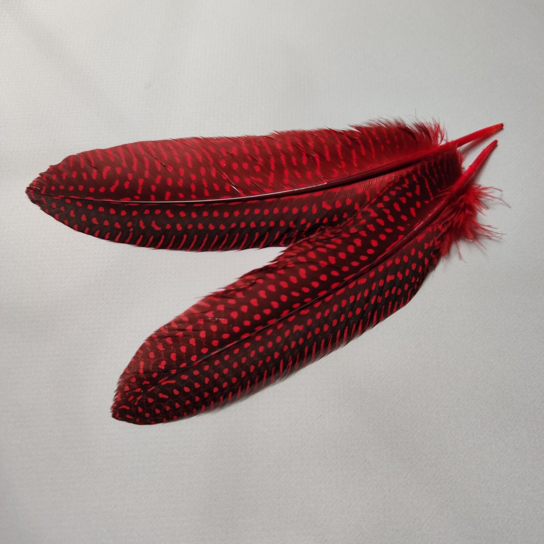 Перо цесарки красные 15-20 см.