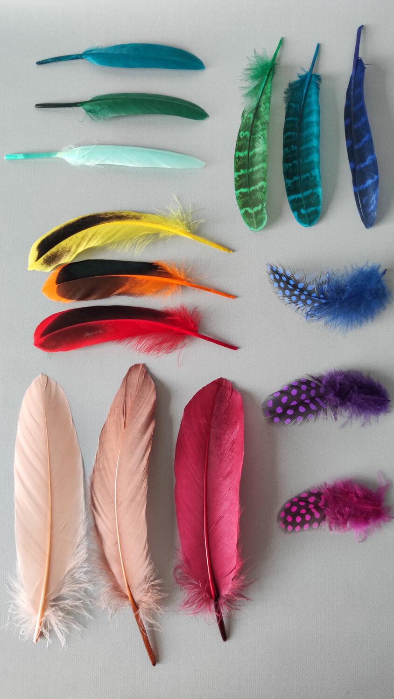 Пятнадцать перьев