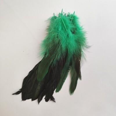 Перья петуха зеленые двухцветные 2 сорт 20 шт.