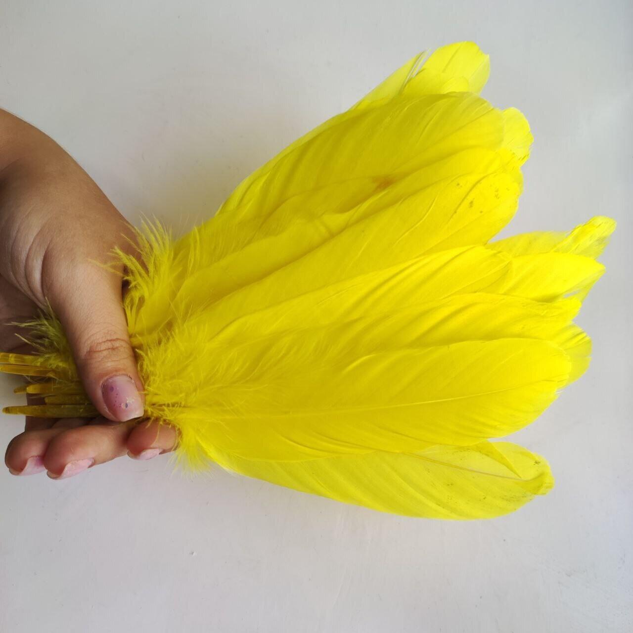 Гусиные перья желтые 2 сорт 20 шт.
