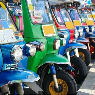 Tuk Tuk Transport Business Plan