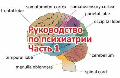 Руководство по психиатрии Часть 1 из 4. Поток 5.