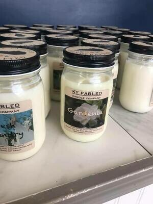 Ky Fabled Candle Co Hibiscus Palm