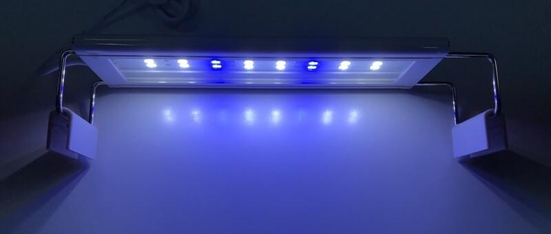 20cm White And Blue LED Light
