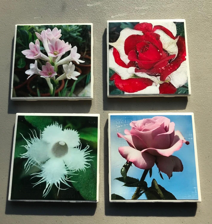 4 pc Flower Coaster Set with Holder