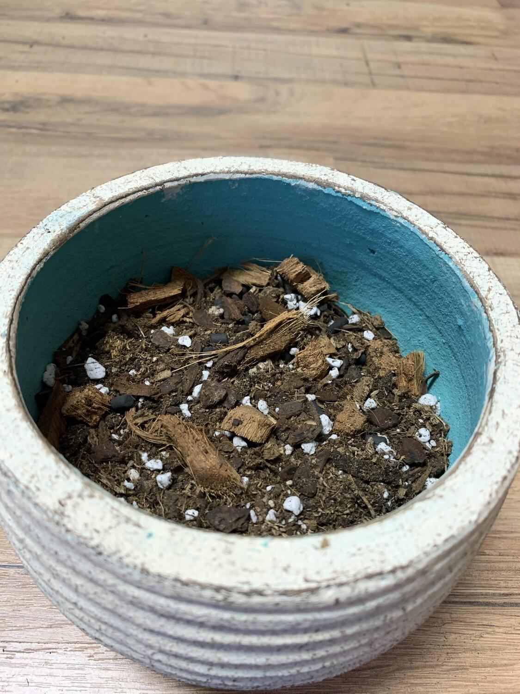 Aroid Soil Mix