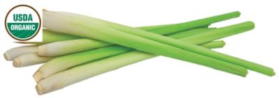 Lemongrass Organic Essential Oil - Cymbopogon flexuosus