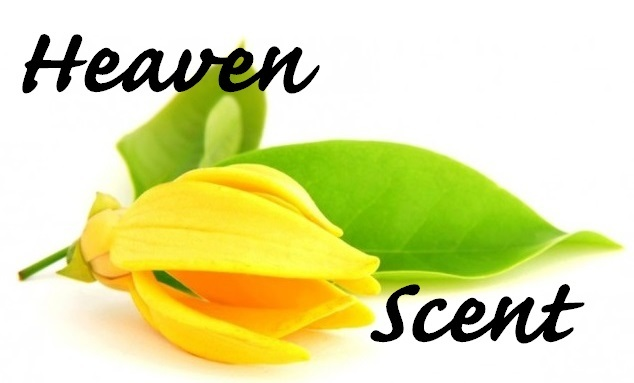 Heaven Scent Organic Essential Oil Blend