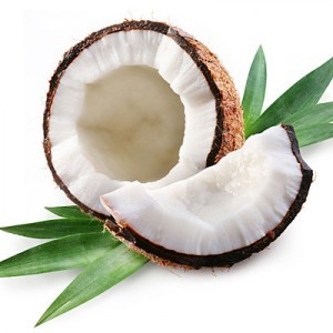 Coconut Fractionated MCT Organic Carrier Oil - Cocos nucifera 2oz