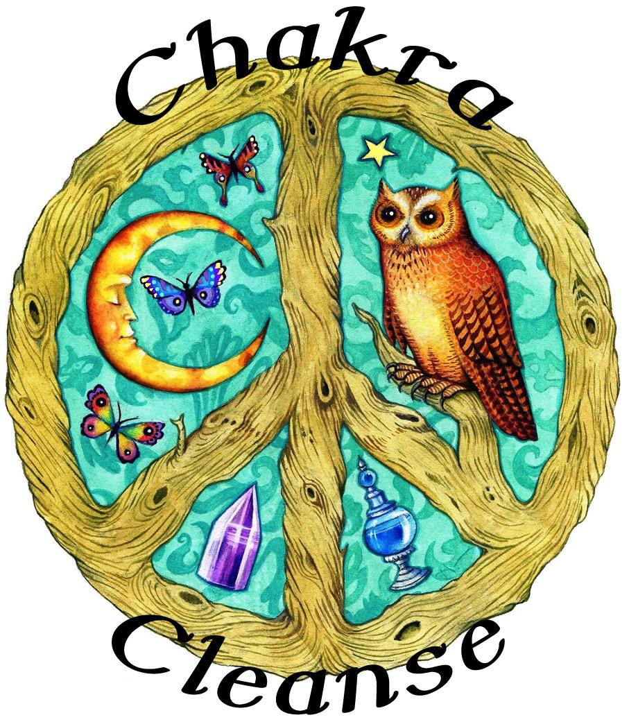 Chakra Cleanse Organic Essential Oil Diffuser Blend