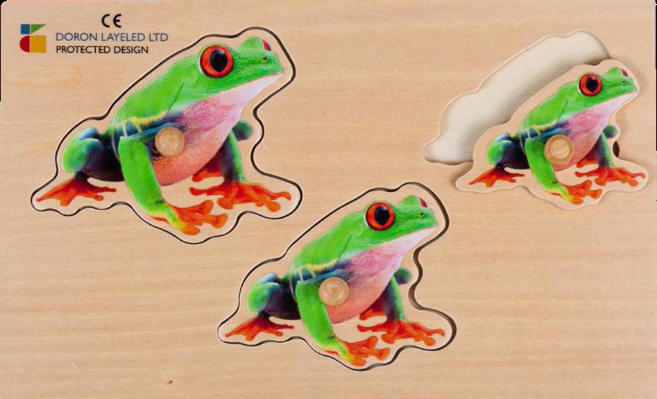 פזל מגדול לקטן צפרדע