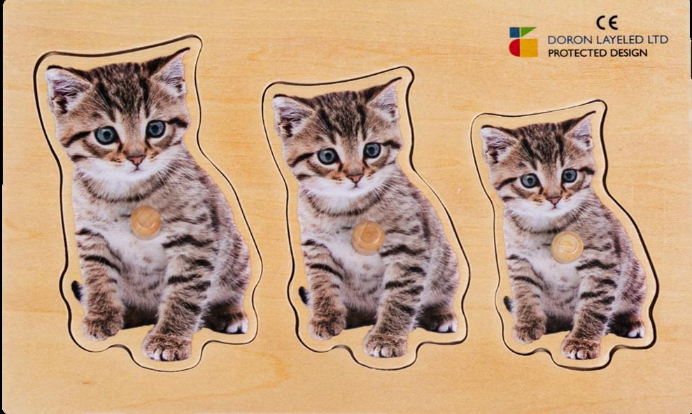 פזל מגדול לקטן חתול