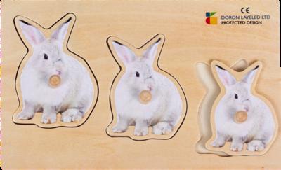 פזל מגדול לקטן ארנבת