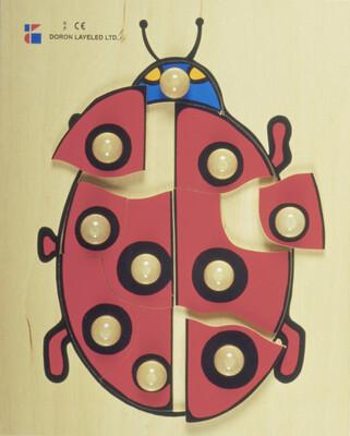 פזל כפתור עץ חיפושית