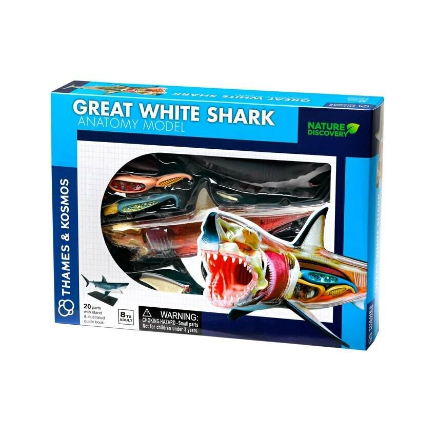 משחק מדע אנטומיה כריש לבן מבית קוסמוס