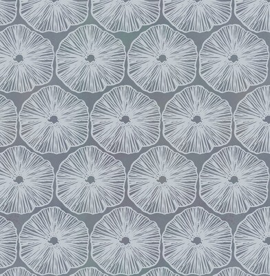 Round Coral on Grey