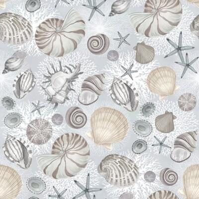 Shells on Grey