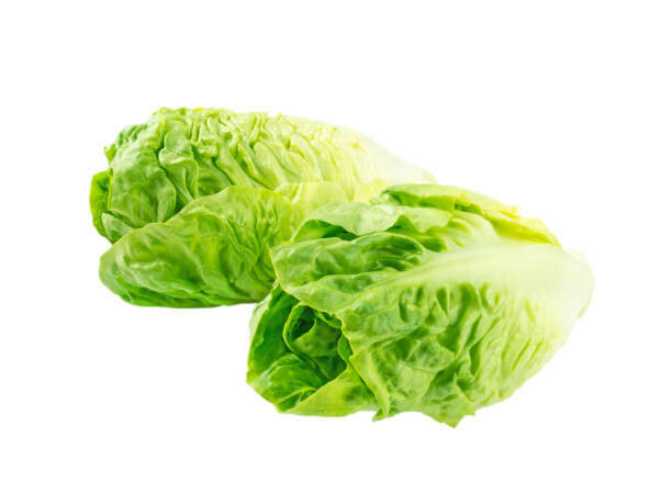 LETTUCE - ROMAINE HEARTS